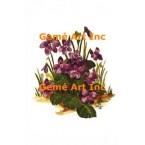 Violets  - #TORG129  -  PARCHMENT PRINT