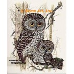 Owls  - #TOR5004  -  PRINT