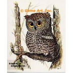 Owl  - #TOR5005  -  PRINT