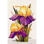 Yellow Purple Iris  - #TOR5061  -  PRINT