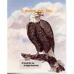 Eagle  - TOR5119  -  PRINT