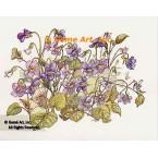 Violets  - #TOR5131  -  PRINT