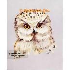 Owl  - #TOR5136  -  PRINT