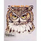 Owl  - #TOR5137  -  PRINT