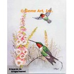 Hummingbirds with Foxgloves  - TOR5139  -  PRINT