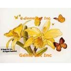Butterflies & Daffodils  - #TOR5141  -  PRINT