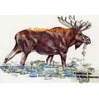Moose  - #TOR5169  -  PRINT