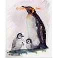 Penguin  - #TOR5171  -  PRINT