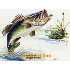 Large Mouth Bass  - #TOR5190  -  PRINT