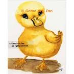 Duck  - #TOR5195  -  PRINT