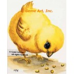 Chick  - #TOR5198  -  PRINT