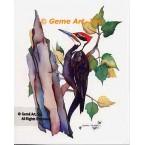 Woodpecker  - #LOR111  -  PRINT