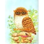 Owl & Ladybug  - #XBAN321  -  PRINT