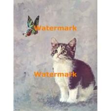 Kitten & Butterfly  - #XBAN354  -  PRINT
