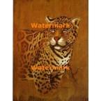 Leopard  - #XBAN532  -  PRINT