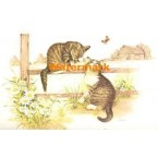 1.  Curious Cats  - #XBAN608  -  PRINT