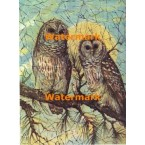 Burred Owls  - #XBAN618  -  PRINT