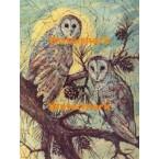 Barn Owls  - #XBAN620  -  PRINT