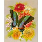 Butterfly  - #XBBF19  -  PRINT