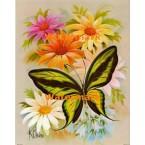 Butterfly  - #XBBF20  -  PRINT