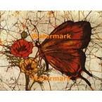 Butterfly  - #XBBF31  -  PRINT