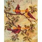 Cardinal  - #XBBI-299  -  PRINT