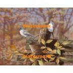 Birds on Fence  - #XBBI-794  -  PRINT