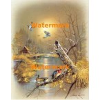 Ducks & Home  - XBBI-935  -  PRINT