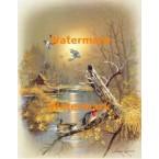 Ducks & Home  - #XBBI-935  -  PRINT