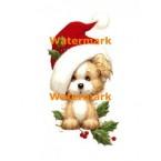 Warm & Whimsical  - #XM172  -  PRINT