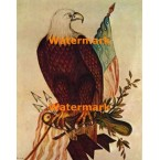 Bald Eagle With American Flag  - #XBMC122  -  PRINT