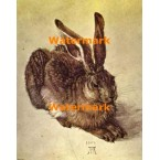 The Hare  - #XBMC65  -  PRINT
