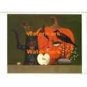 Still Life with Pumpkin  - #XBSL141  -  PRINT