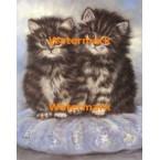 Cats  - #XBAN1048  -  PRINT