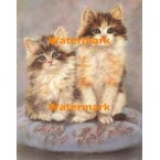 Cats  - #XBAN1049  -  PRINT