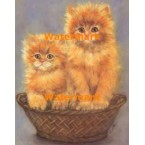 Cats  - #XBAN1050  -  PRINT