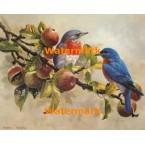 Bluebirds  - #XBBI-1244  -  PRINT