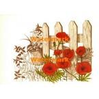 Poppies in Bloom  - #XBFL1007  -  PRINT
