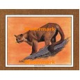 Mountain Lion  - #XKFL1067  -  PRINT