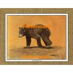 Black Bear Cub  - #XKFL1070  -  PRINT