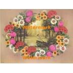 Flower Window  - XBFL1285  -  PRINT