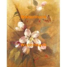 Flower  - #XBFL1654  -  PRINT