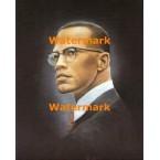 Malcolm X  -  #XBPO1184  -  PRINT