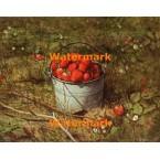 Pail of Strawberries  - #XBSC1391  -  PRINT