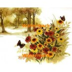 Flowers in Field  - XBSC1724  -  PRINT