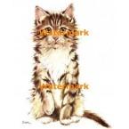 Cat  - #XD10080  -  PRINT