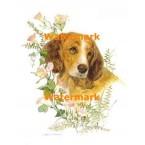 Pup  - #XD10111  -  PRINT
