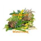 Habitat Log  - #XD10459  -  PRINT