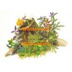 Habitat Log  - #XD10466  -  PRINT
