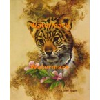 Jungle Cub  - #XD10575  -  PRINT